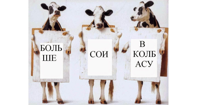 ФАЛЬСИФИКАЦИЯ